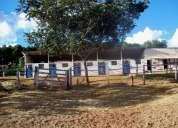 Aluguel de baias para cavalos