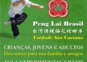 Arte marcial tradicional chinesa