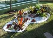 Manutenção de jardins em itú