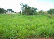 Terreno no Rio Preto da Eva KM 3 Baixo Rio