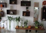 Loja de decoraÇÃo de ambientes