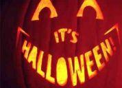 .decoraÇÃo de halloween aboboras esculpidas