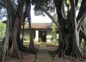 Sitio na rs 020. prox. a morungava gravatai
