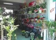 Vende floricultura  (Ótimo negÓcio)