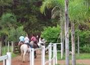 Rancho del mar-brasilia- aluguel de baias.cavalgadas, passeios  cavalo, aluguel de cavalos
