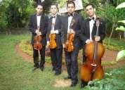 Quarteto de cordas para casamento bodas debutante recepção eventos em geral